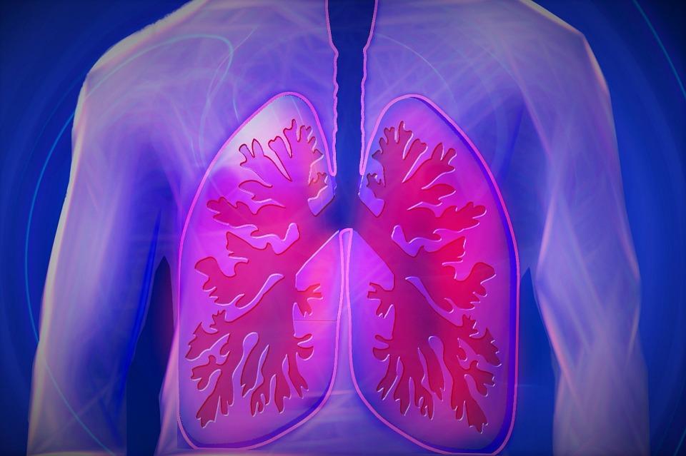 facteurs de risque du poumon